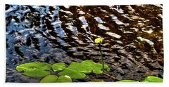 Beach Sheet featuring the photograph Lily Pads On First Lake by David Patterson