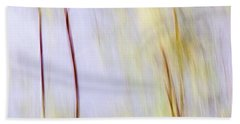 Limbs Beach Sheet
