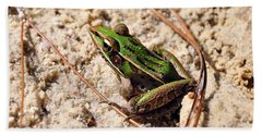 Beach Towel featuring the photograph Lime-like by Al Powell Photography USA