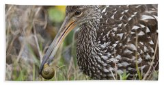 Limpkin, Aramus Guarauna Beach Sheet