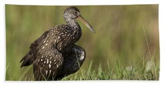 Limpkin Stretching In The Grass Beach Sheet