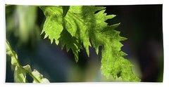 Linden Leaf - Beach Towel