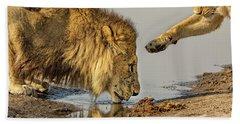 Lion Affection Beach Towel