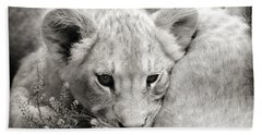 Lion Cub Beach Sheet