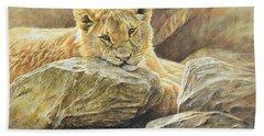 Lion Cub Study Beach Towel
