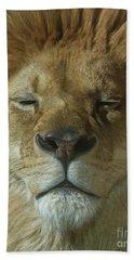 Lion Of Judah Beach Sheet