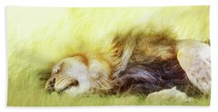 Lion Sleeping In Tall Grass Beach Towel