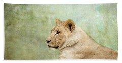 Lioness Portrait II Beach Sheet by Wade Brooks