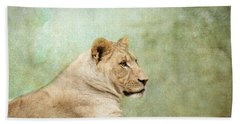 Lioness Portrait Beach Towel by Wade Brooks