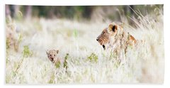 Lioness With Baby Cub In Grasslands Beach Sheet