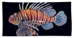 Lionfish In Black Beach Towel