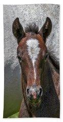 Beach Sheet featuring the photograph Lipizzan Horses #2 by Stuart Litoff