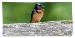 Beach Towel featuring the photograph Little Barn Swallow by Ricky L Jones