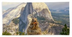 Little, Big Squirrel Beach Towel