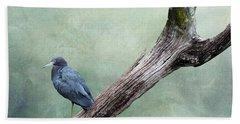 Little Blue Heron On Green Beach Sheet