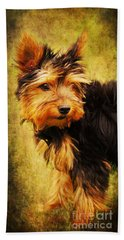 Little Dog II Beach Towel