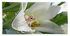 Little Field Mouse Beach Towel