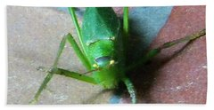 Beach Towel featuring the photograph Little Grasshopper by Denise Fulmer
