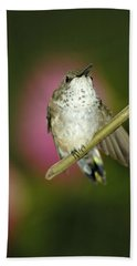 Little Humming Bird Beach Towel
