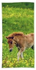 Beach Towel featuring the photograph Little One by Joan Davis