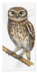 Little Owl Or Minerva's Owl Athene Noctua - Goddess Of Wisdom- Chouette Cheveche- Nationalpark Eifel Beach Towel