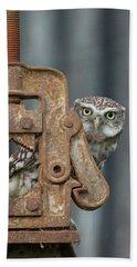 Little Owl Peeking Beach Sheet