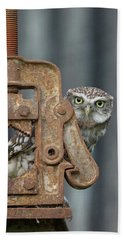Little Owl Peeking Beach Towel