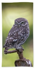 Little Owl Pipe Bender Beach Towel