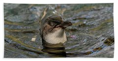 Little Penguin In The Water Beach Towel