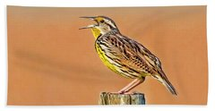 Little Songbird Beach Towel by HH Photography of Florida