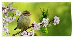 Little Sparrow Beach Sheet