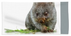 Little Wombat Beach Towel