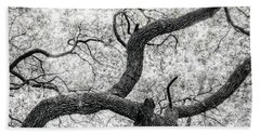 Live Oak Abstract 1 Beach Sheet
