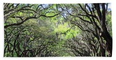 Live Oak Canopy Beach Sheet