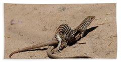 Lizard Love Beach Towel