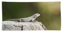 Lizard On Fence Post Beach Sheet