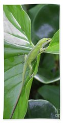 Lizard Waimea Trail Beach Towel