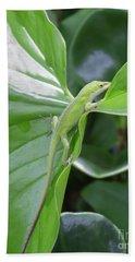 Lizard Waimea Trail Beach Sheet