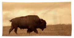 Lone Bison  Beach Sheet by American West Legend By Olivier Le Queinec