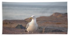 Beach Towel featuring the photograph Lone Gull by  Newwwman