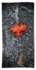 Beach Towel featuring the photograph Lone Leaf On Ice by Rikk Flohr