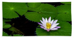 Beach Towel featuring the photograph Lone Lily by Ken Frischkorn