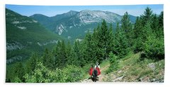 Lone Llama Packer In Gorgeous Mountain Wilderness Beach Towel by Jerry Voss
