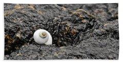 Lone Seashell Beach Towel