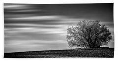 Beach Towel featuring the photograph Lone Tree by Dan Jurak