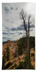 Lone Tree In Bryce Canyon Beach Towel