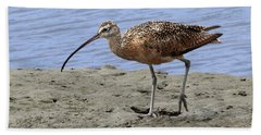 Long-billed Curlew Beach Towel