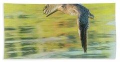 Long-billed Dowitcher 4799-091917-1cr Beach Sheet