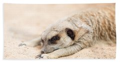 Long Day In Meerkat Village Beach Sheet