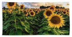 Long Island Sunflowers  Beach Sheet